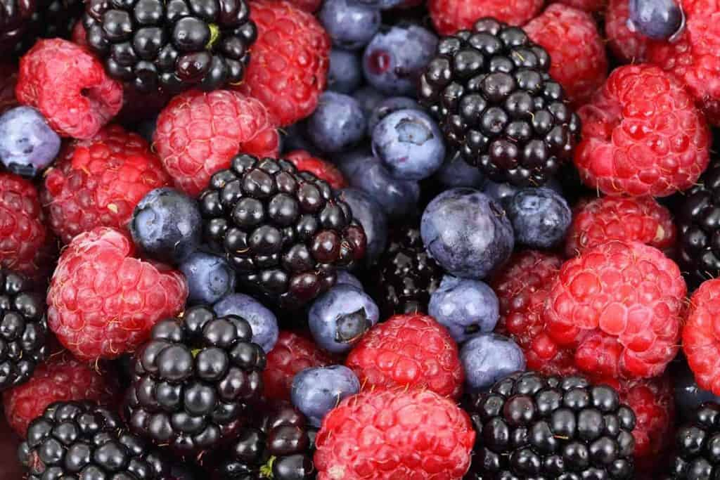 Berries - to be used in a fruit infuser water bottle